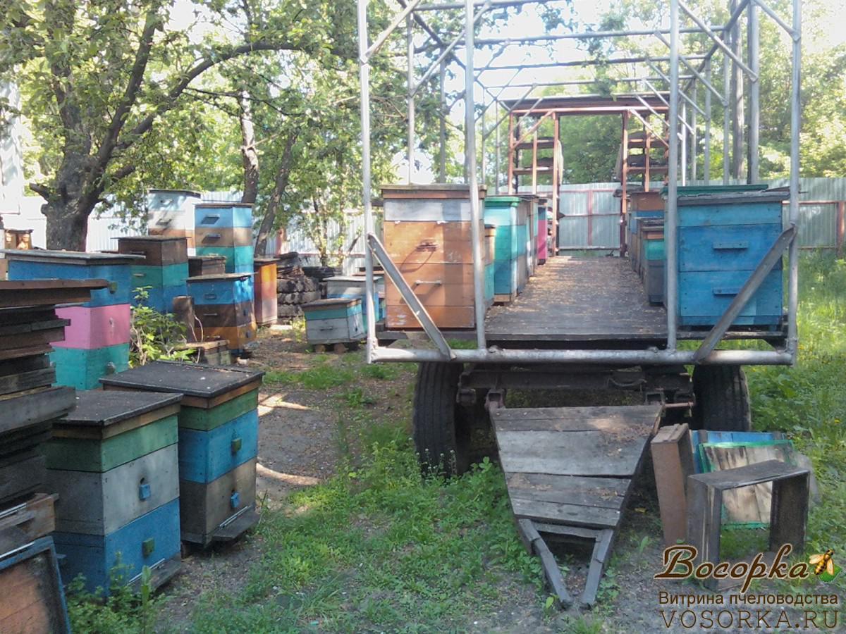 Платформа для кочевки пчел своими руками 98
